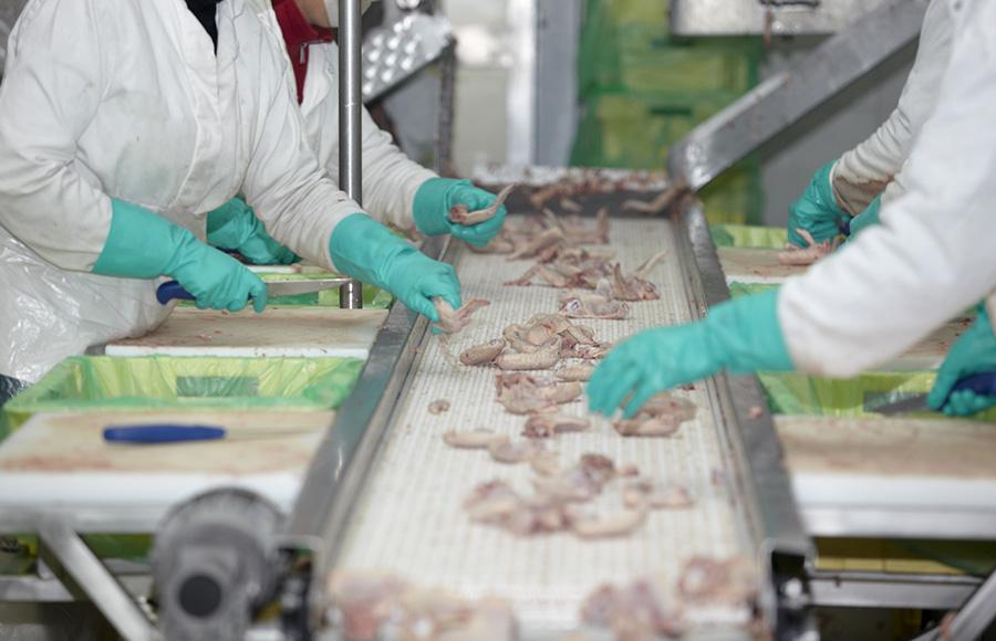 ปัจจัยเสี่ยงต่อการปนเปื้อนของเชื้อโรคในอุตสาหกรรมอาหาร
