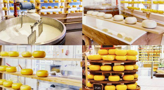 สถาบันอาหารหนุนเพิ่มมูลค่าวัตถุดิบปั้น 'ฮับเมืองนวัตกรรมอาหารโลก'