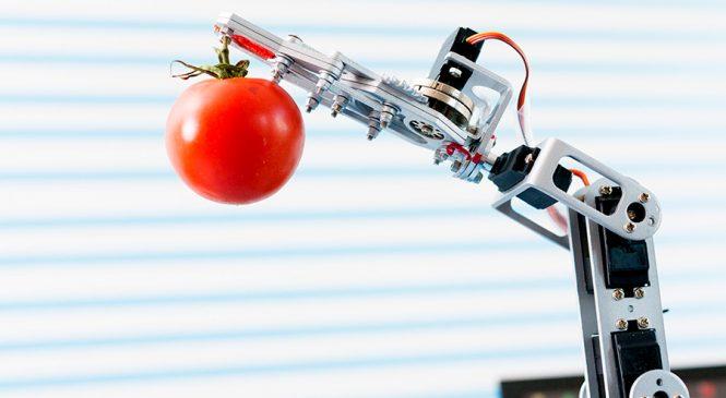 หุ่นยนต์นิ่ม (Soft Robot)