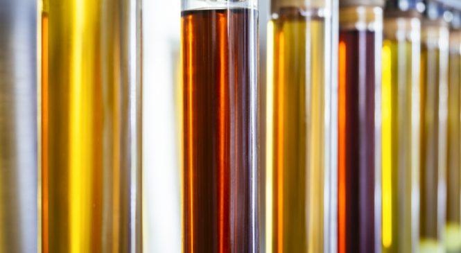 The Researcher: พัฒนาเอนไซม์เพื่อพลังงานชีวมวล