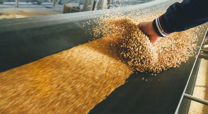 ปรากฏการณ์ 'ขาดแคลนอาหาร' กำลังเกิดขึ้นทั่วโลก