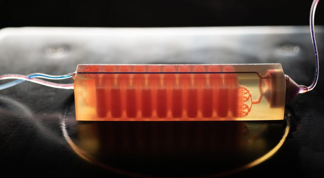 3D Printing ผลิตชิ้นส่วนเพื่อกรองเซลล์มะเร็งในเลือด