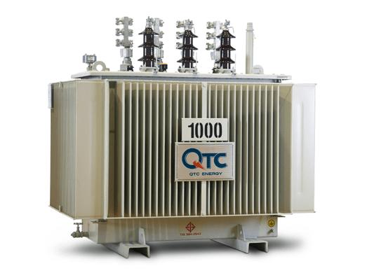 Oil Immersed Transformer (หม้อแปลงไฟฟ้าชนิดฉนวนน้ำมัน)