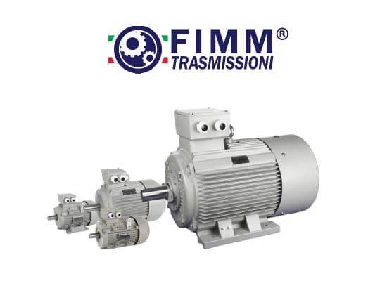 Electric Motor, Induction Motor
