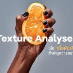 Texture Analyser - เมื่อ 'เนื้อสัมผัส' สำคัญกว่ารสชาติ