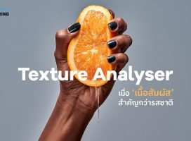 Texture Analyser – เมื่อ 'เนื้อสัมผัส' สำคัญกว่ารสชาติ
