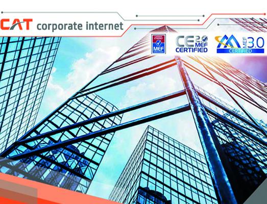 Corporate Internet