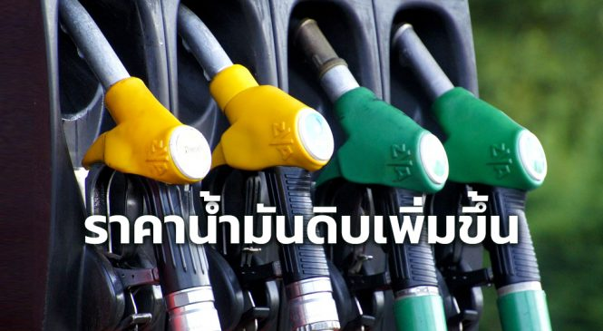ราคาน้ำมันดิบเพิ่มขึ้น หลังสหรัฐ-ยุโรป คลายล็อกดาวน์