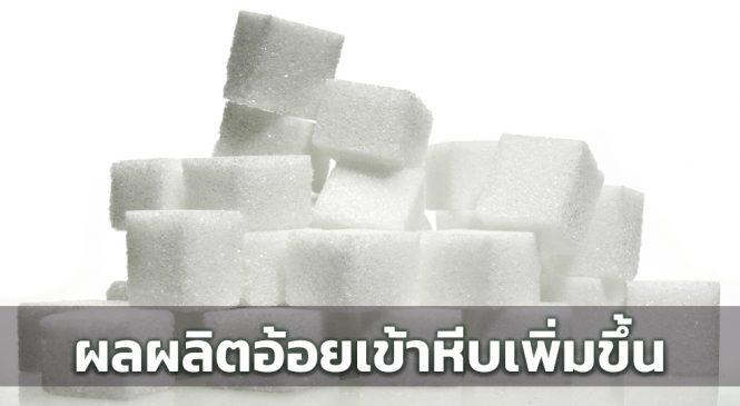 โรงงานน้ำตาลทราย คาดการผลิตอ้อยปีนี้ อยู่ที่ 90 ล้านตันอ้อย
